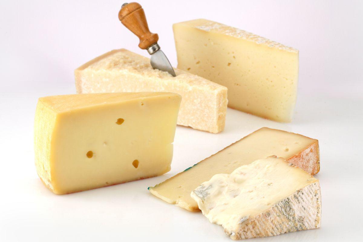 allerta formaggi