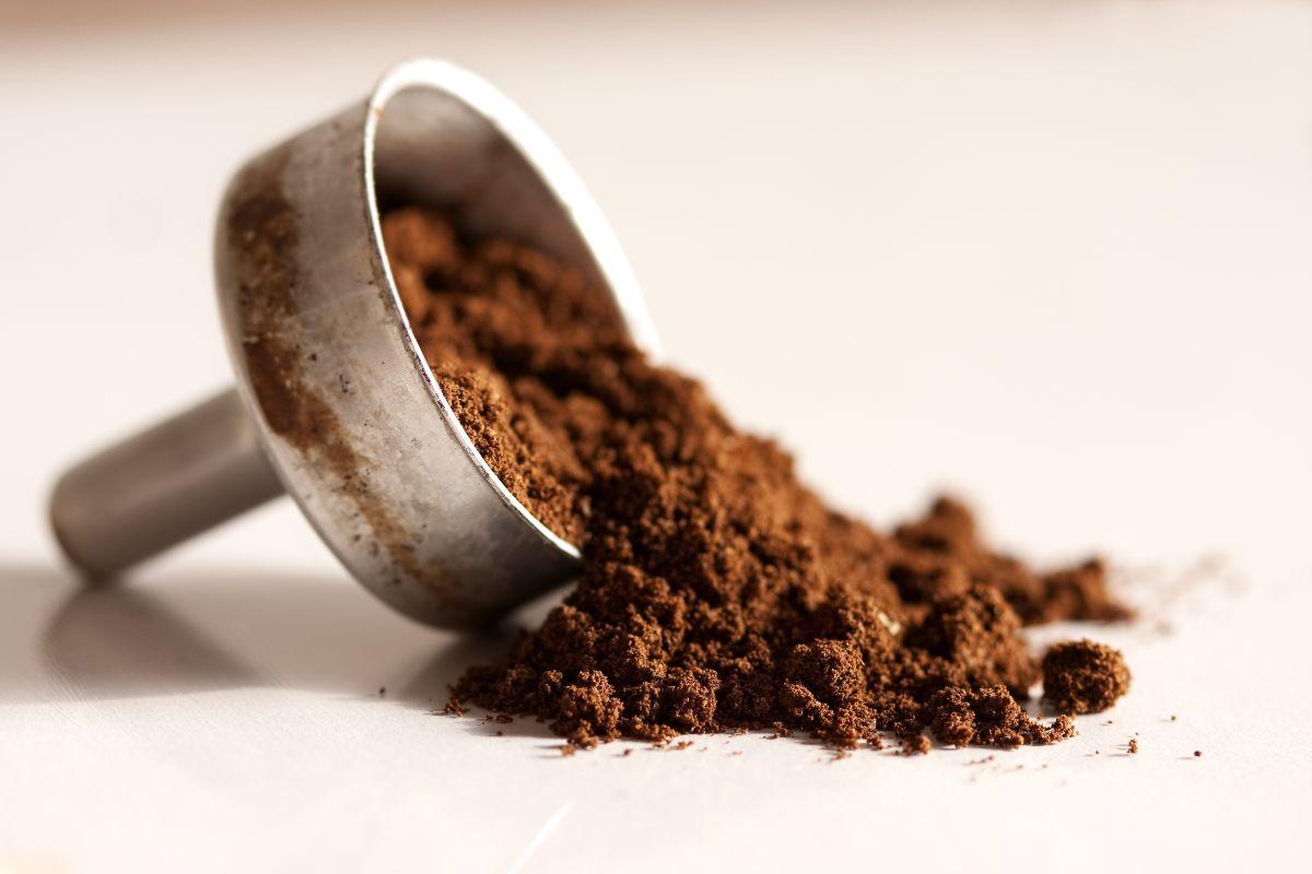 Quando prepari il caffè con la moka non dovresti commettere questi errori
