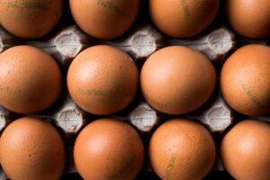 leggere il codice di tracciabilità sulle uova