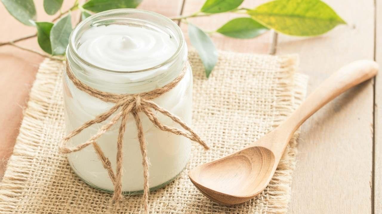 yogurt ricette