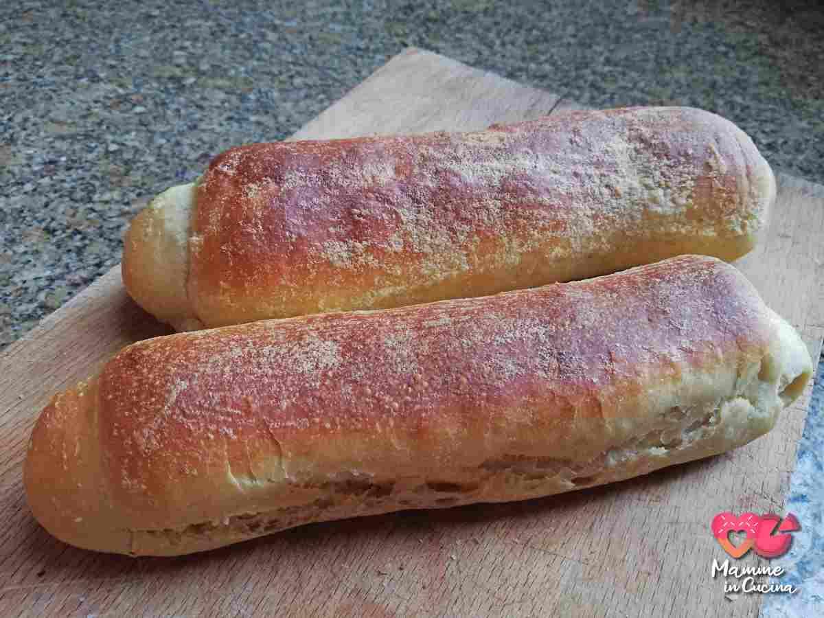 panino per hot dog
