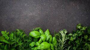platessa miele erbe aroomatiche