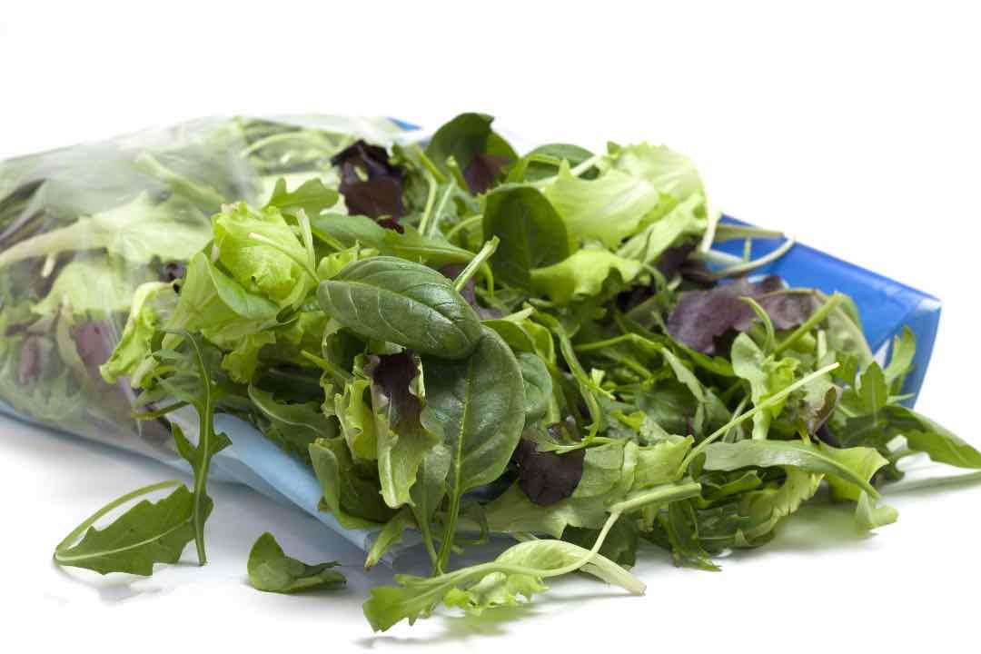 conservare l'insalata più a lungo