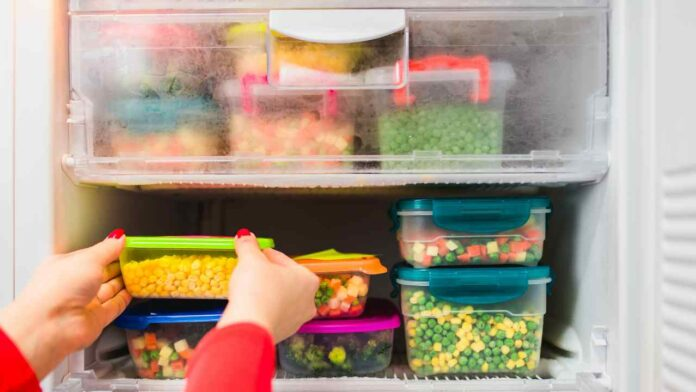 cibi freezer