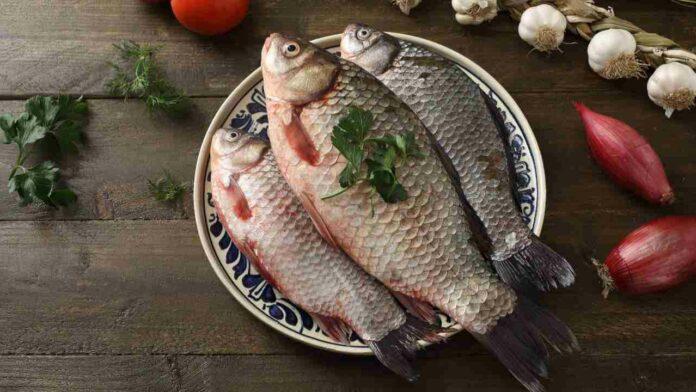 lessare pesce trucchi